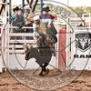 CHRIS BECHTHOLD-2124 PARADISE FOR CHICKENS-PRCA-SF-WD- (109)