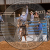 BLANE STACY-0 WHOS KNOWS-PRCA-TL-FR- (56)