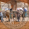 DEAN WADSWORTH-328 CATS PAW-PRCA-TL-SN- (86)