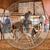 DEAN WADSWORTH-328 CATS PAW-PRCA-TL-SN- (88)