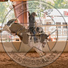 DEAN WADSWORTH-328 CATS PAW-PRCA-TL-SN- (91)