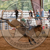 TAYLOR PRICE-P37 HAPPY TRAILS-PRCA-TL-SN- (91)