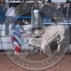 BULL FIGHTERS-AYBR-CO-SA-SG- (31)