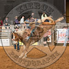 LOGAN NELSON-Y10 TATER TOT-PRCA-BT-TH- (54)