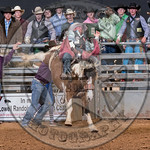 MIKE SOLBERG-H03 SWEET FAME-PRCA-BT-TH- (57)