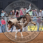 MIKE SOLBERG-H03 SWEET FAME-PRCA-BT-TH- (62)