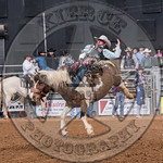MIKE SOLBERG-H03 SWEET FAME-PRCA-BT-TH- (63)