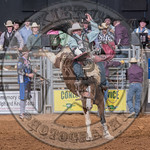 MIKE SOLBERG-H03 SWEET FAME-PRCA-BT-TH- (60)