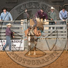 LOGAN NELSON-Y10 TATER TOT-PRCA-BT-TH- (51)
