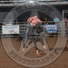 MADIE HARE-PRCA-BT-SL-WD- (86)