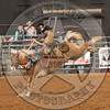 LOGAN NELSON-Y10 TATER TOT-PRCA-BT-TH- (55)