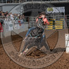 MADIE HARE-PRCA-BT-SL-WD- (84)