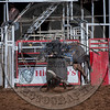 KEVIN DOUWEN-Y10 BUCKLE UP-PRCA-CL-FR- (12)-9
