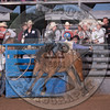 TANNER PHIPPS-102 LIBERATED AT NIGHT-PRCA-RB-BB1- (112)-91