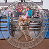 CLAYTON BIGLOW-5608 GOLDEN NIGHTLOCK-PRCA-RB-BB1- (47)-1