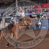 TANNER PHIPPS-102 LIBERATED AT NIGHT-PRCA-RB-BB1- (121)-99