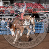 BILL TUDOR-9202 LIBERTY FREE-PRCA-RB-BB-RD2- (74)-7