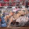 CLAYTON BIGLOW-5608 GOLDEN NIGHTLOCK-PRCA-RB-BB1- (51)-5