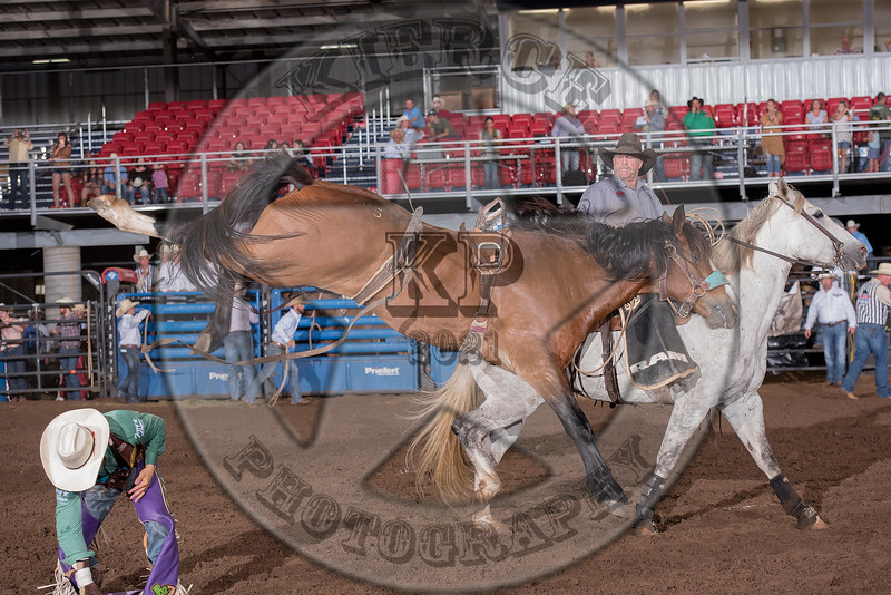 JAKE BROWN-045 FADED NIGHT-PRCA-RB-BB-RD2- (96)-28