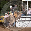 TREVOR KASTNER-X35 EARL THE SQUIRRE-PRCA-HL-TH- (80)-79