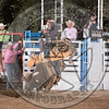 TREVOR KASTNER-X35 EARL THE SQUIRRE-PRCA-HL-TH- (79)-78