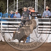 MIKE MORENO-X35 EARL THE SQUIRRE-PRCA-HL-SA- (101)-50