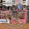 DUSTIN BOQUET-X35 EARL THE SQUIRREL-PRCA-SA-KL- (26)