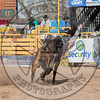 TYLER BERGHUIS-00 AWESOME SAUCE-PRCA-LF-SN- (43)