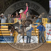 BLAISE FREEMAN-901 FADED VELET-PRCA-LF-SA- (57)
