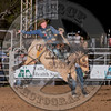 SPENCER WRIGHT-231 UNCLE BUCK-PRCA-LF-FR- (52)