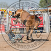 J C HESTER-P37 HAPPY TRAILS-PRCA-LF-SN- (27)