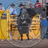 MATT HALBERT-222 PRETTY BOY-PRCA-LF-SA- (34)
