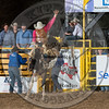 BLAISE FREEMAN-901 FADED VELET-PRCA-LF-SA- (56)