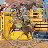 TANNER BOTHWELL-70 PISTOLS AND ROSES-PRCA-LF-SN- (88)