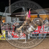 BLAISE FREEMAN-901 FADED VELET-PRCA-LF-SA- (59)