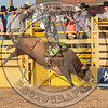 TANNER BOTHWELL-70 PISTOLS AND ROSES-PRCA-LF-SN- (87)