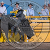 MATT HALBERT-222 PRETTY BOY-PRCA-LF-SA- (37)