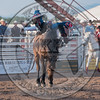 KELLY TIMBERMAN-045 BILLY THE KID-PRCA-SF-WED- (86)-49
