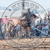 RIO LEE-045 BILLY THE KID-PRCA-SF-FR- (102)