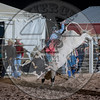 CLAYTON JOE APPELHANS-275 RUSTLER'S CAT-PRCA-SF-SA- (25)