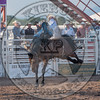KELLY TIMBERMAN-045 BILLY THE KID-PRCA-SF-WED- (84)-47