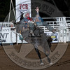 PADEN HURST-664 TWISTED SISTER-PRCA-SG-TH- (30)
