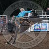 SHANE PROCTOR-D134 TEQUILA GOLD-PRCA-SG-TH- (85)