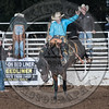 SHANE PROCTOR-D134 TEQUILA GOLD-PRCA-SG-TH- (81)