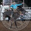 SHANE PROCTOR-D134 TEQUILA GOLD-PRCA-SG-TH- (84)