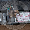 MATT CRUMPLER-99 PAINTED RIVER-PRCA-SV-SA- (11)