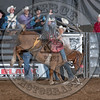 TOBY COLLINS-013 DIRT NAP-PRCA-SV-SN- (98)