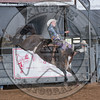 JAKE BROWN-807 SHADY NIGHTS-PRCA-SV-SN- (90)
