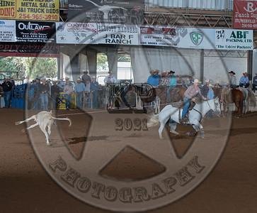 STEPHENVILLE TX-2017