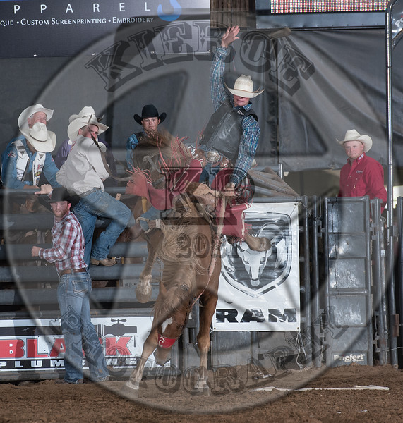 TOBY COLLINS-013 DIRT NAP-PRCA-SV-SN- (102)